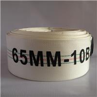 Vòi chữa cháy PVC D65-10BAR-20M