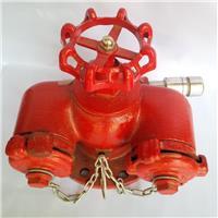 Họng chữa cháy có tay vặn SQD100-1.6(Nắp Ren D65*2, có van xả áp)